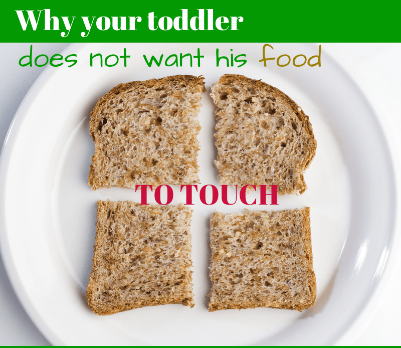 Why your toddler does not want his food to touch