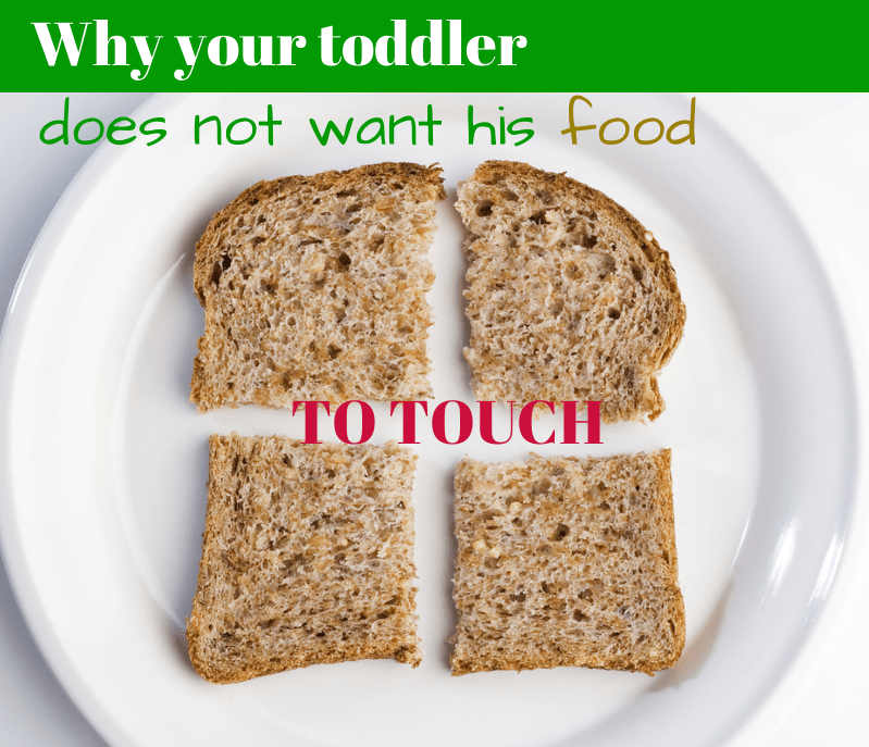 Why your toddler does nto want his food to touch