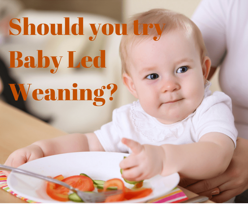 Should you try Baby Led Weaning?