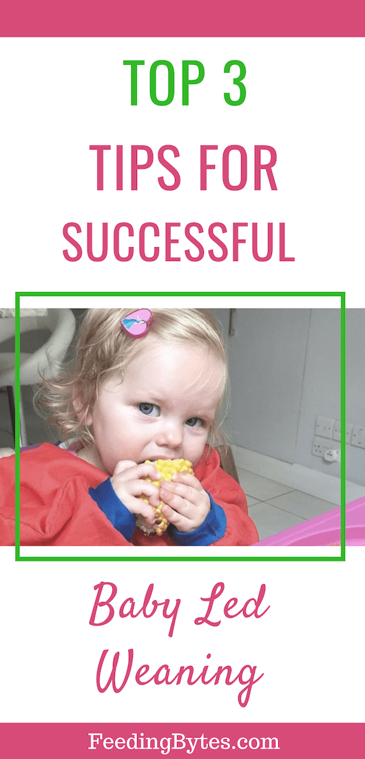 Top 3 tips for successful baby led weaning - Feeding Bytes