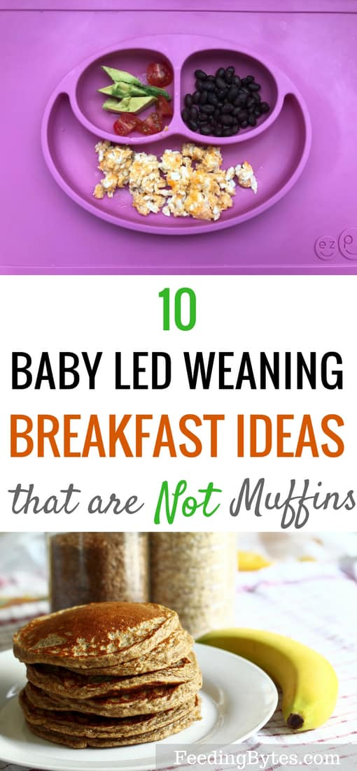 These are 10 baby led weaning breakfast ideas that are not muffins. Includes both sweet and savory options that baby will love. | Feeding Bytes