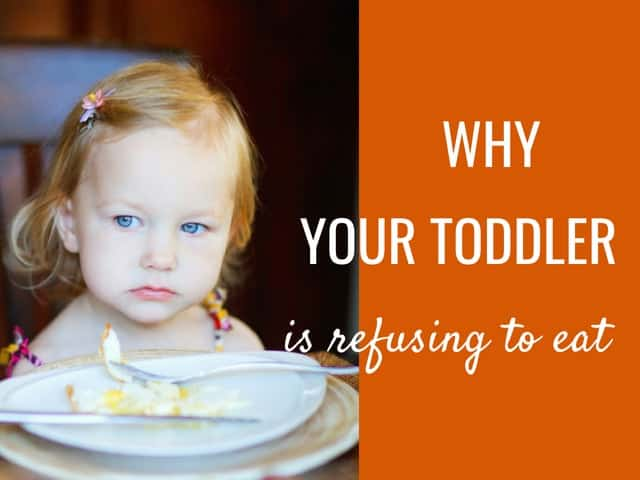 These are the reasons why your toddler is refusing to eat and what you can do about it. From Feeding Bytes