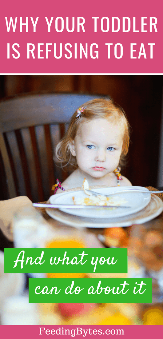 Four reasons why your toddler is refusing to eat and what you can do about it. From Feeding Bytes
