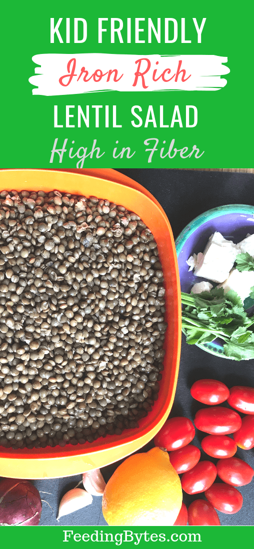 High Fiber Iron Rich Lentil Salad that your picky eater will love plus strategies to help your kids enjoy salads